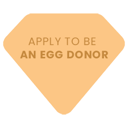 Apply To Be An Egg Donor